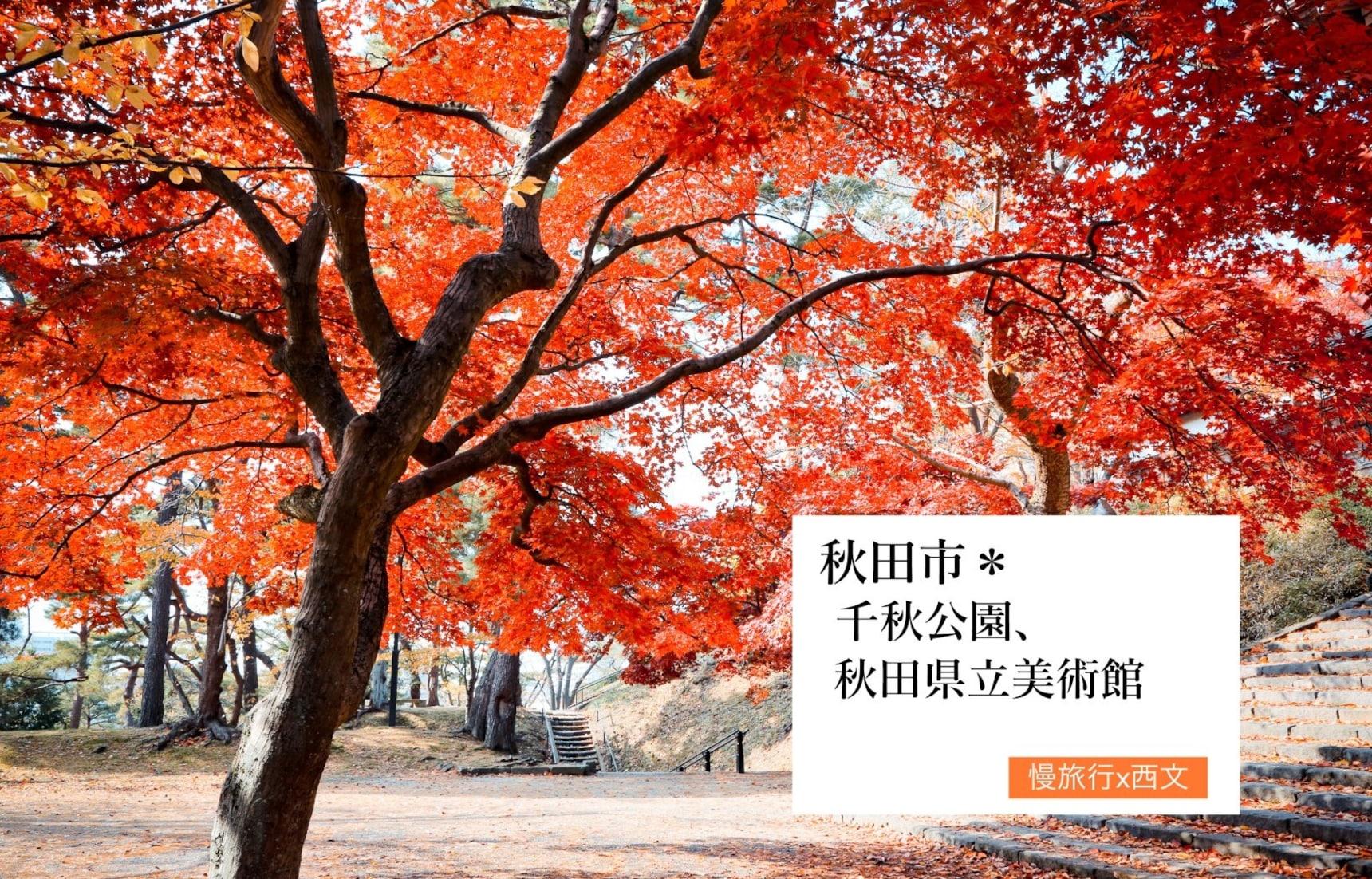 秋田賞楓去 Day 3 |比內地雞料理&千秋公園、秋田縣立美術館