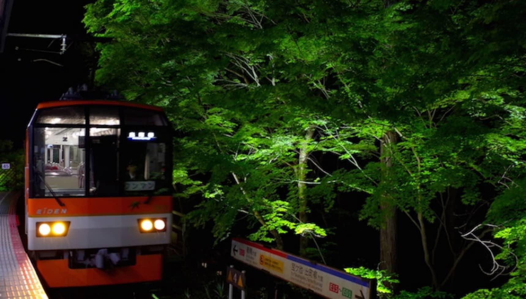 3 Reasons to Visit Kyoto in May
