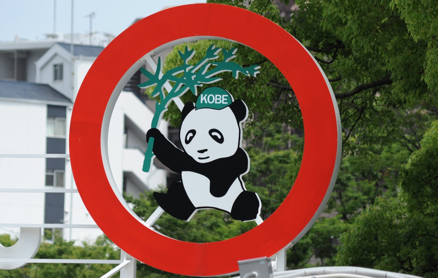 Meet a Giant Panda at Kobe Oji Zoo!