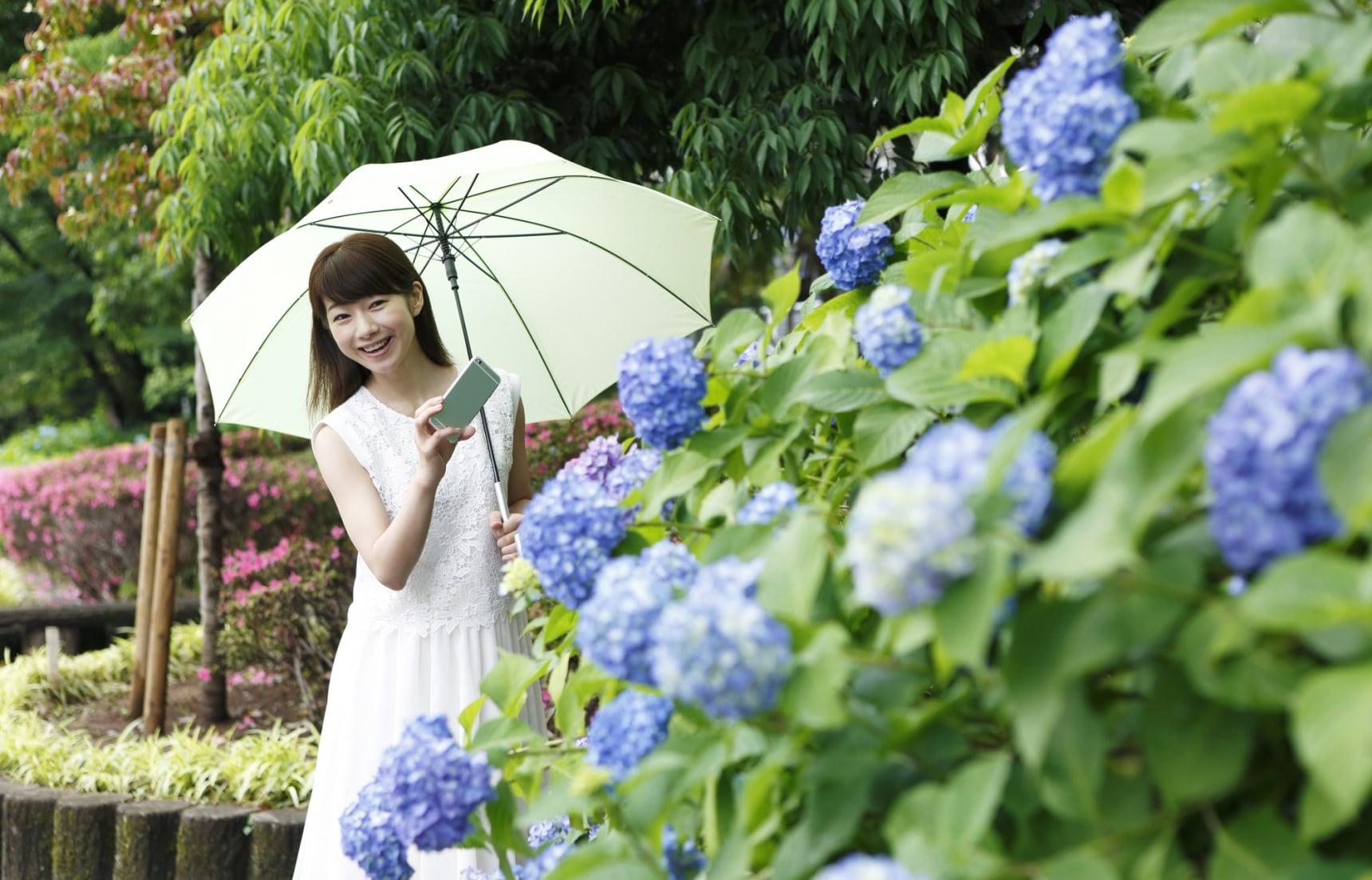Rainy Season 101