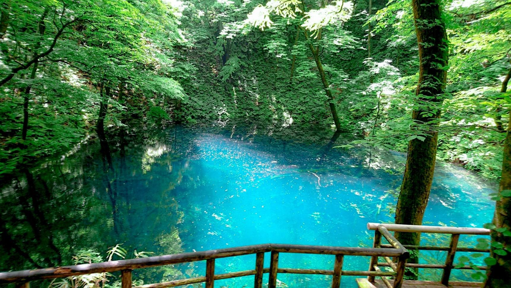 3 มรดกโลกทางธรรมชาติของญี่ปุ่นที่สวยลืมหายใจ