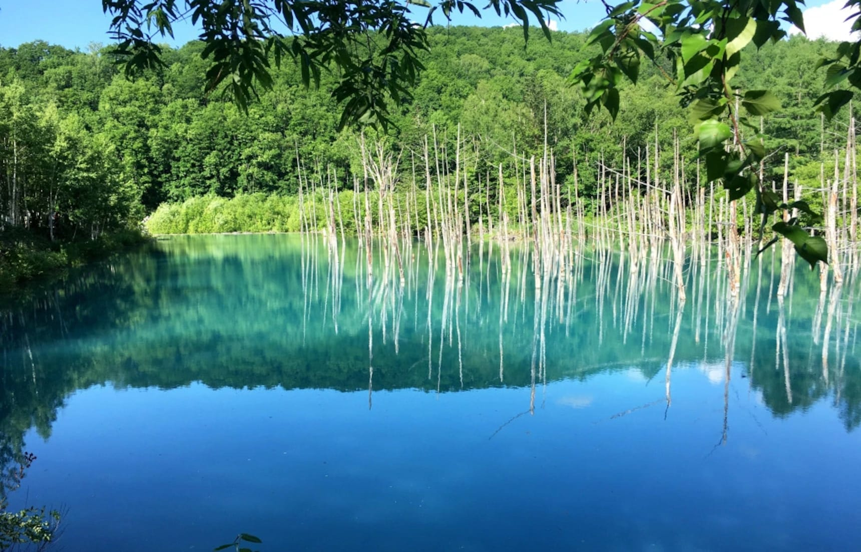 Gorgeous Blue Pond Is Worth a Trip Up North