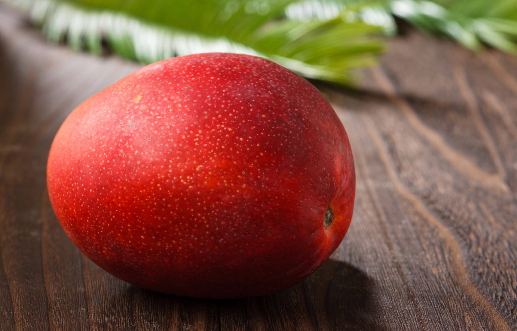 5 Most Expensive Fruits That Are Made in Japan