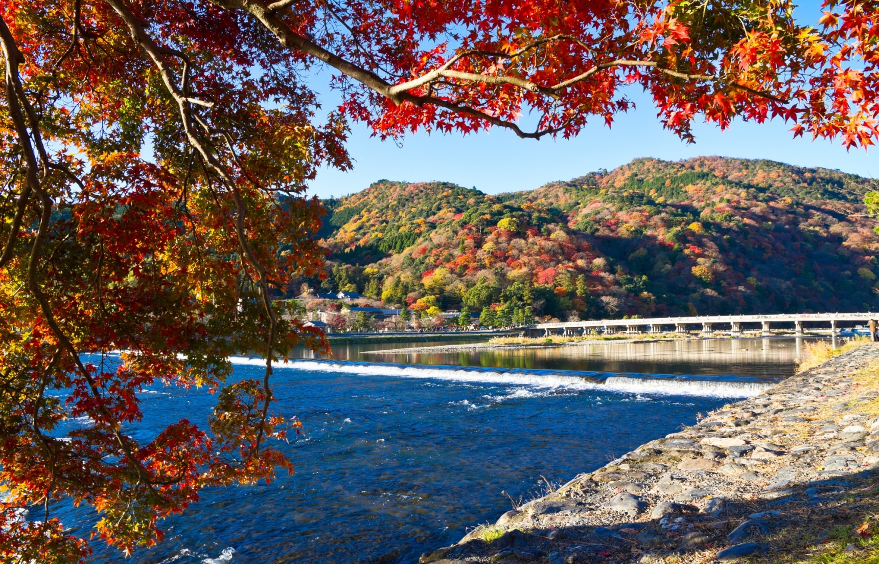 Top 5 Regions to See Red Leaves in Japan