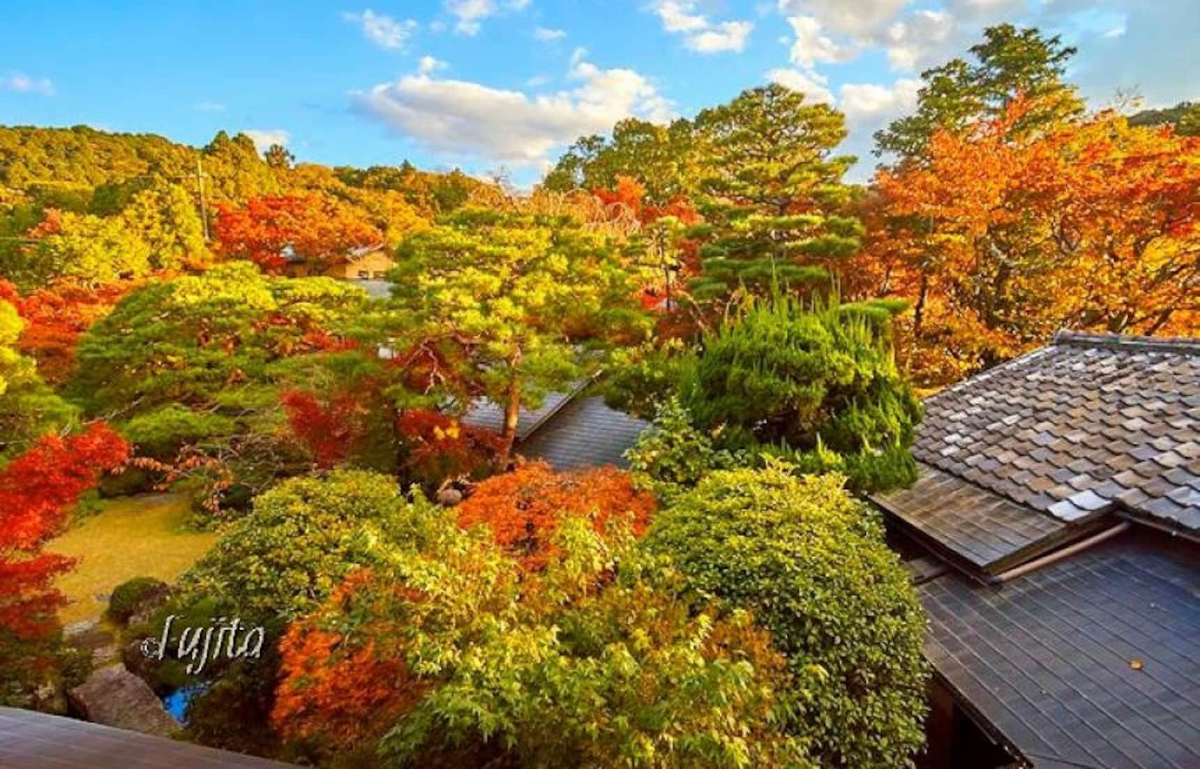 Stay at These Inns & Get the Kyoto Experience