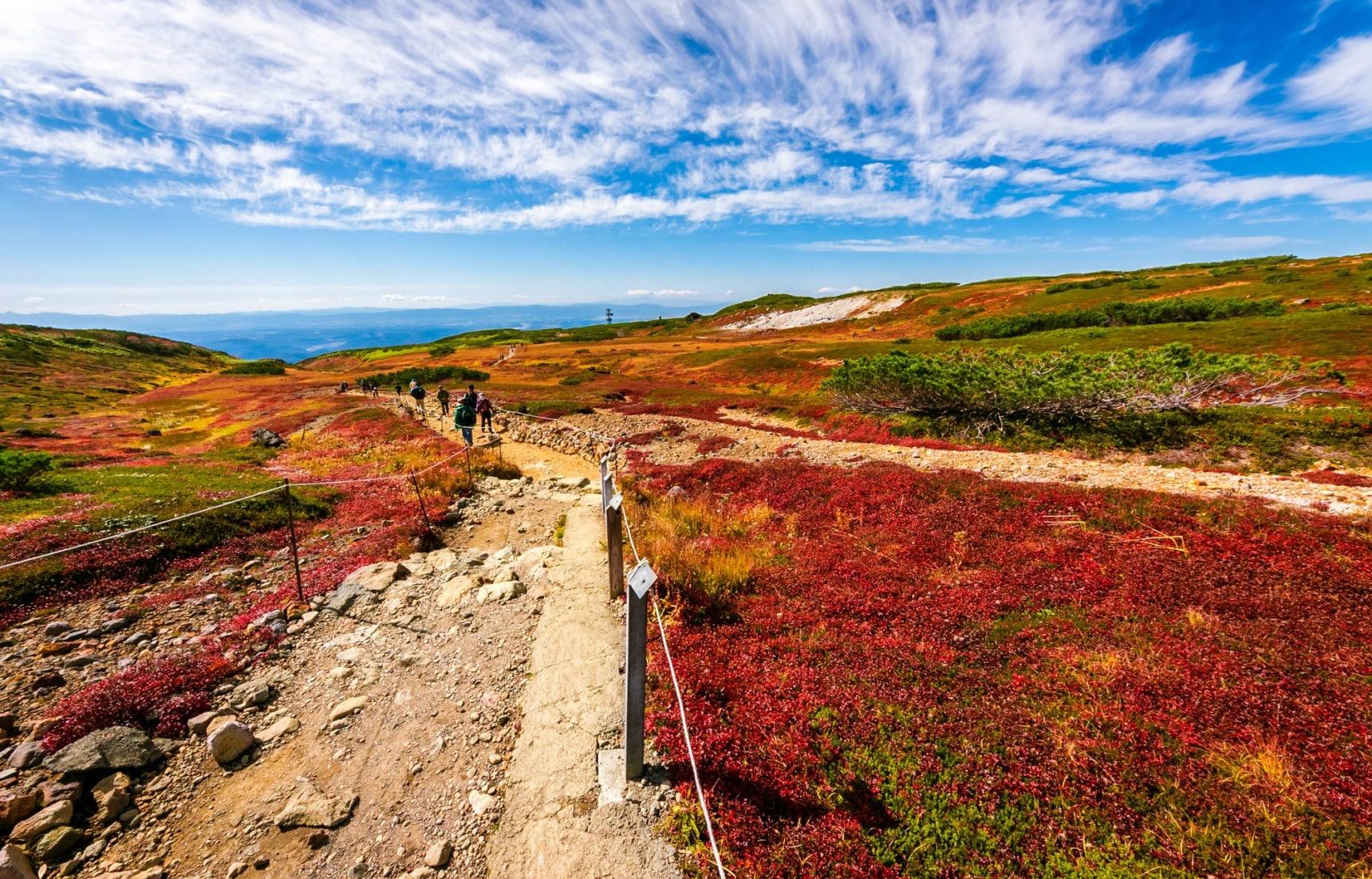2016秋季去了绝不会后悔的日本红叶观赏圣地TOP4