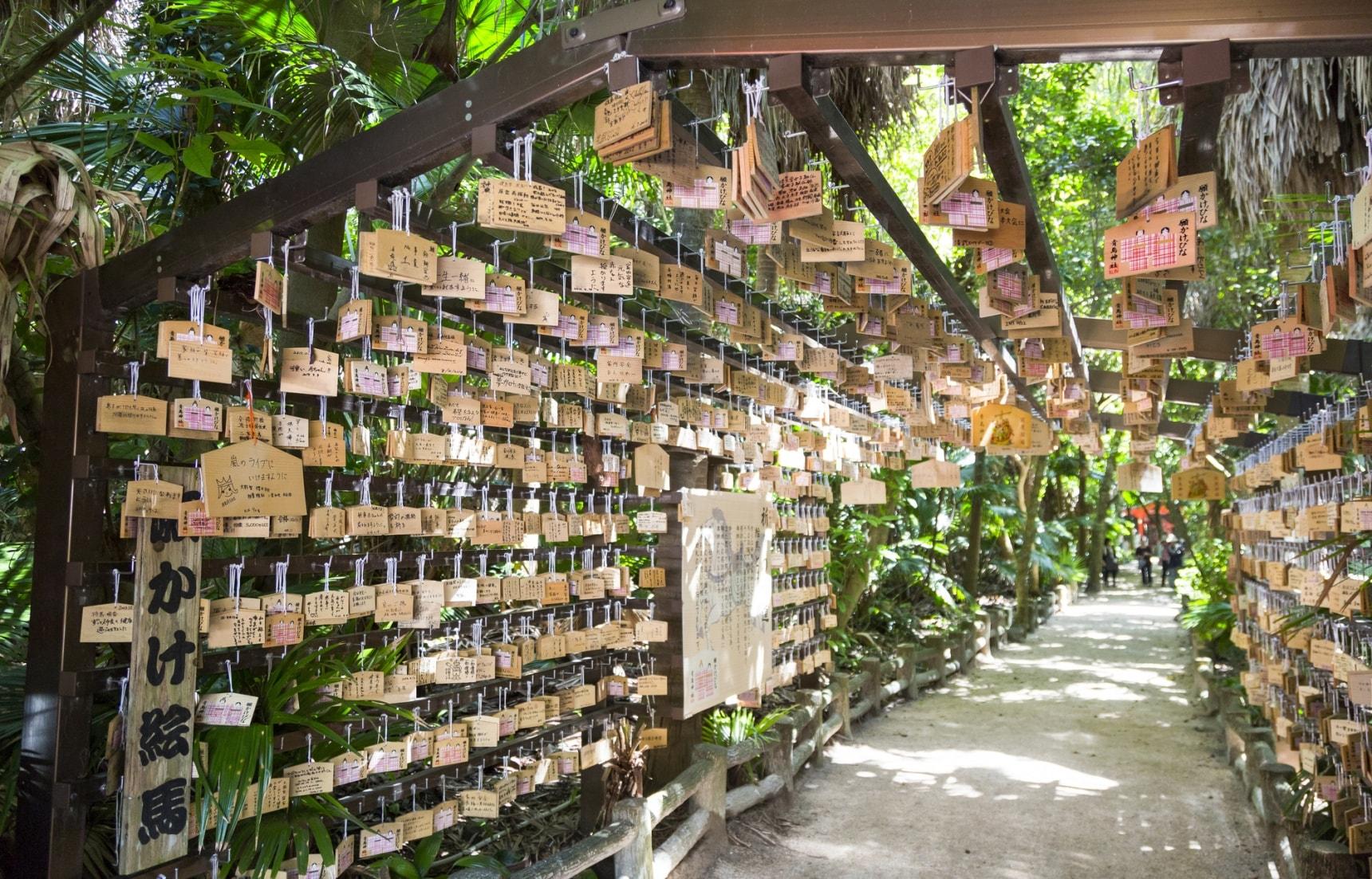 九州必遊神秘小島|宮崎縣「青島」