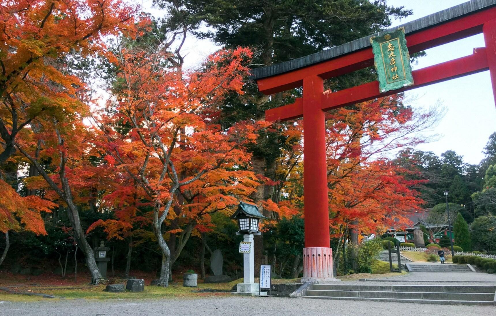 Tohoku in Fall: The Ultimate Koyo Experience