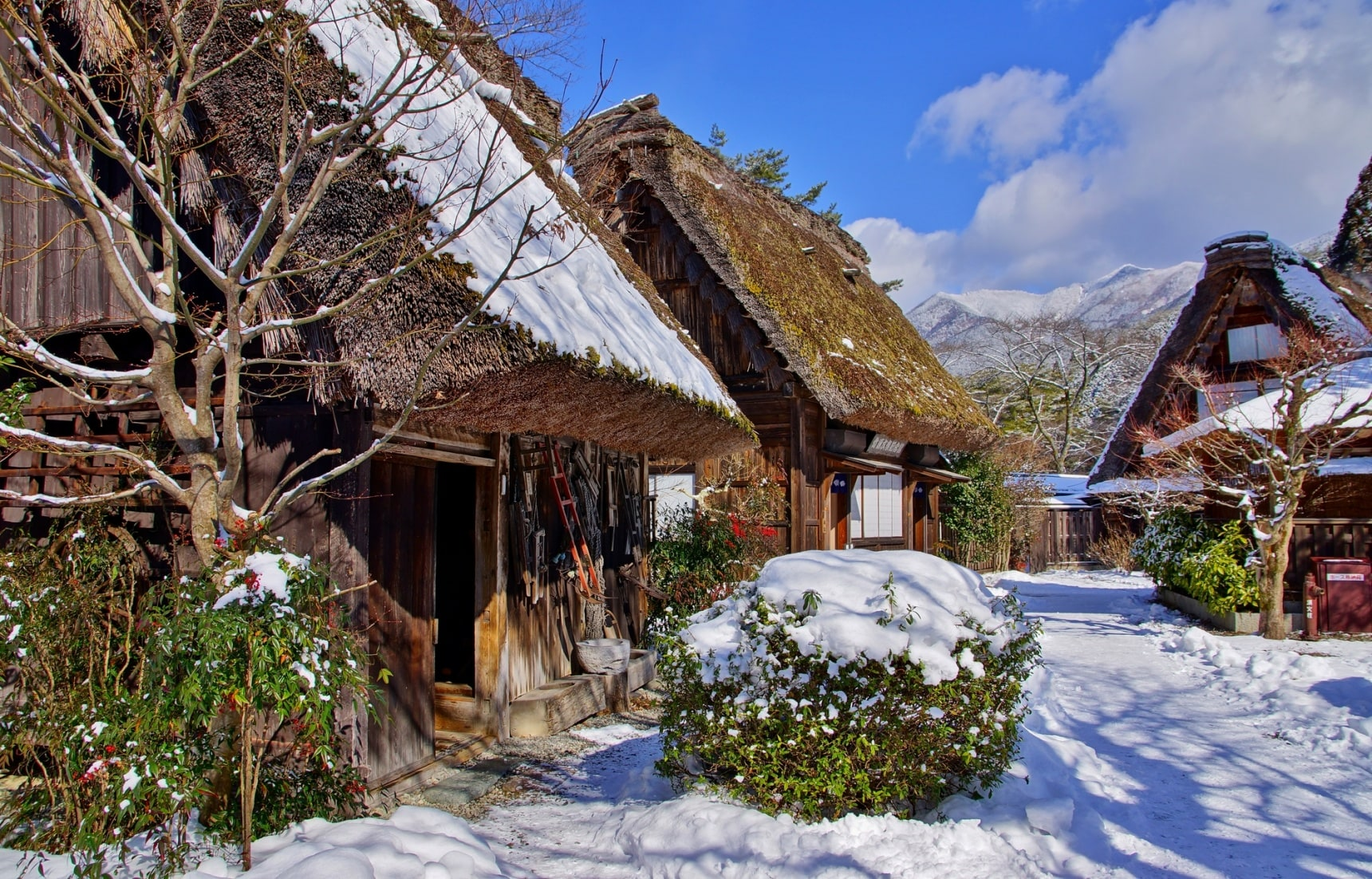 5 Great Snow Getaways from Nagoya