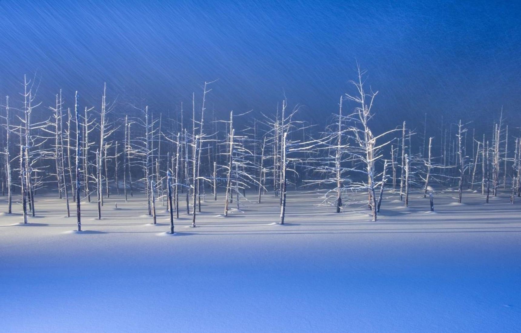 연인과 겨울을 맞이하기 좋은 곳: 홋카이도 2부