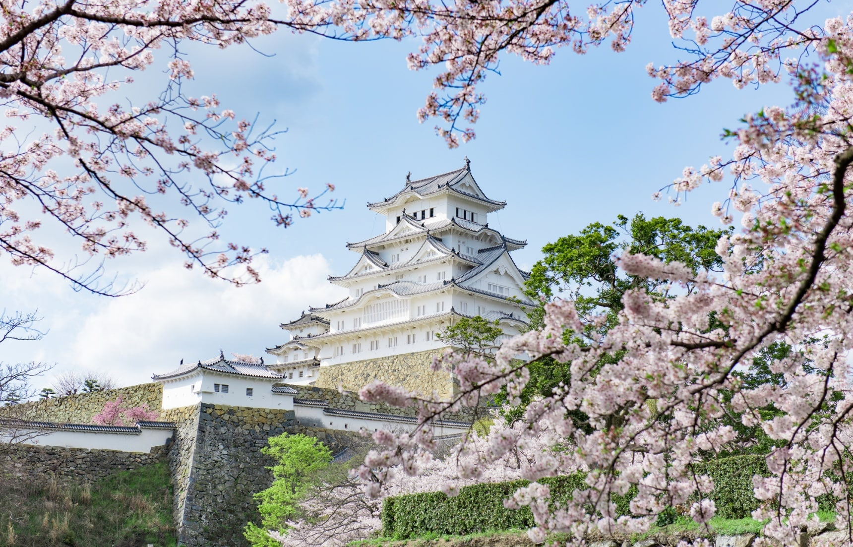日本最佳花見景點推薦 你一定要知道的東京・鎌倉・京都・奈良賞櫻名勝