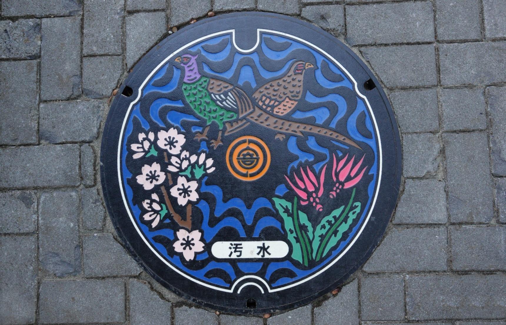 Japanese Manholes: Art Under Your Feet