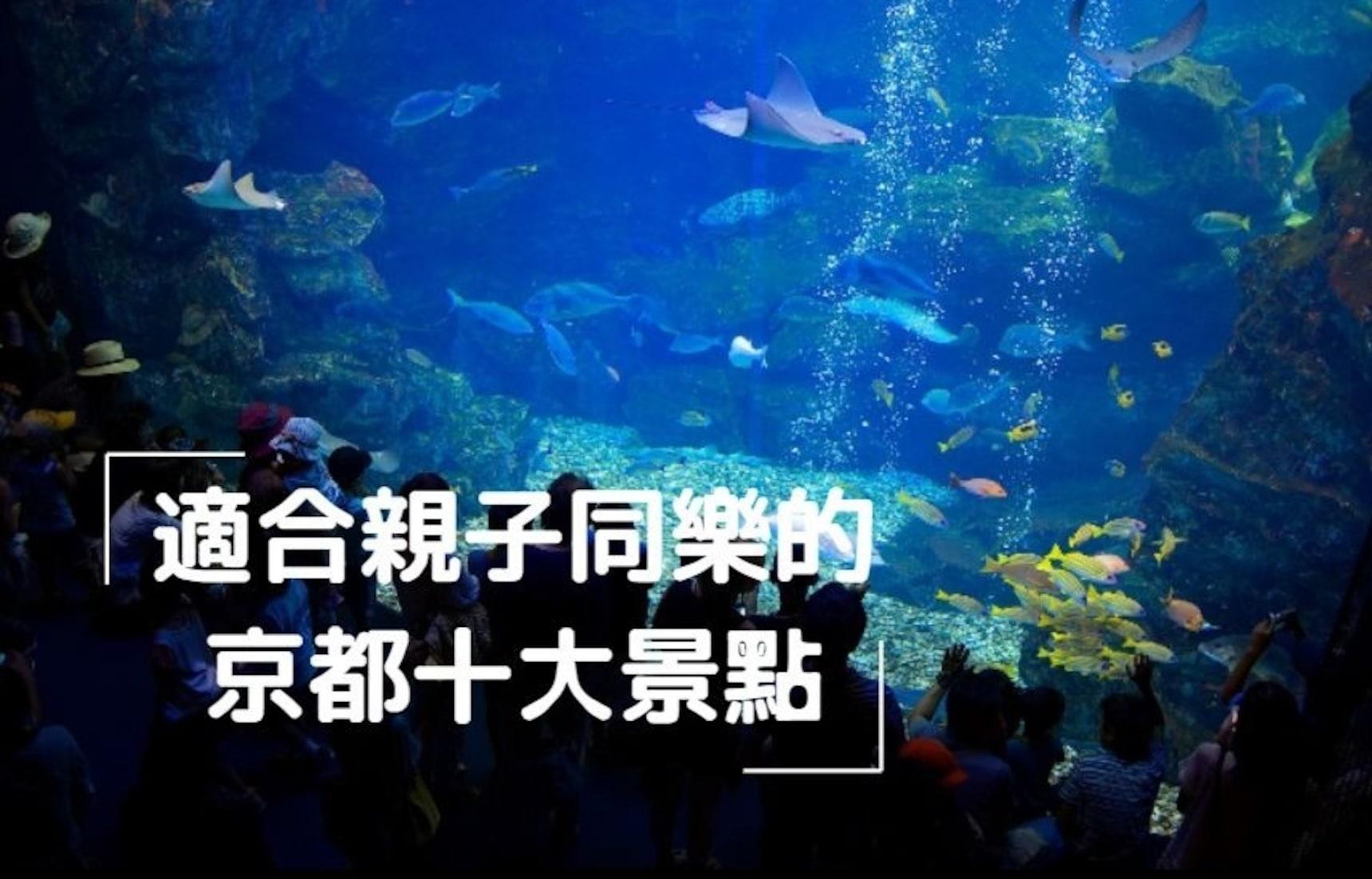 【京都景點】親子遊新選擇!主題樂園・戶外體驗・生態接觸路線推薦