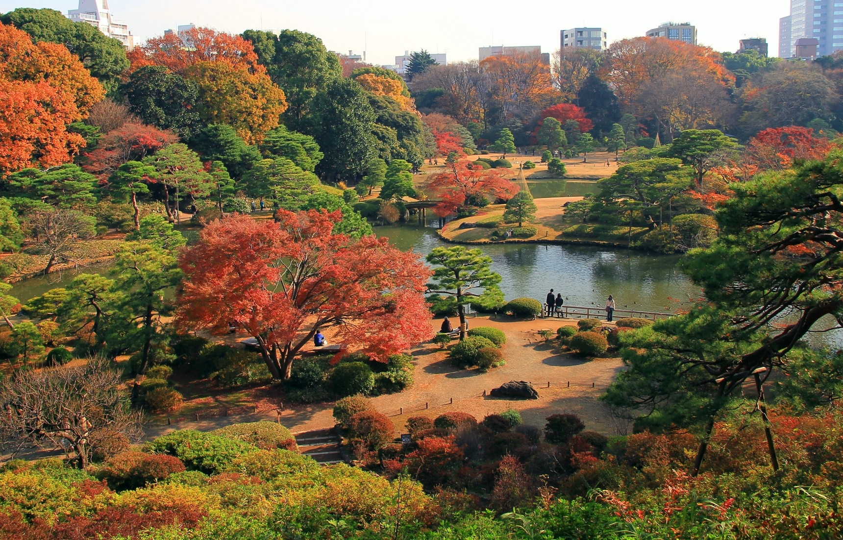 Rikugien Garden: A Paradise Fit for a Daimyo