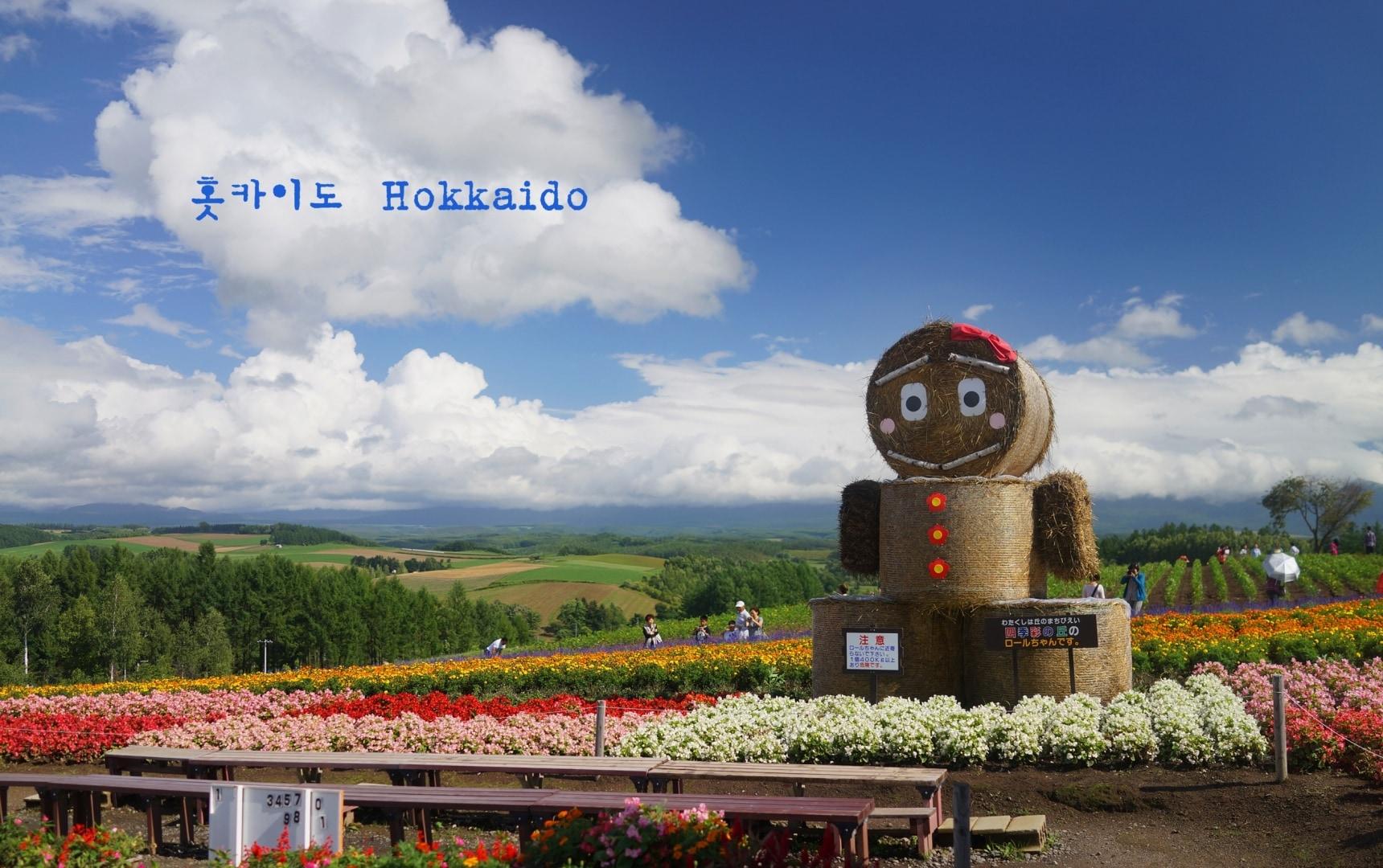 먹방 여행을 원한다면 홋카이도로 떠나라!