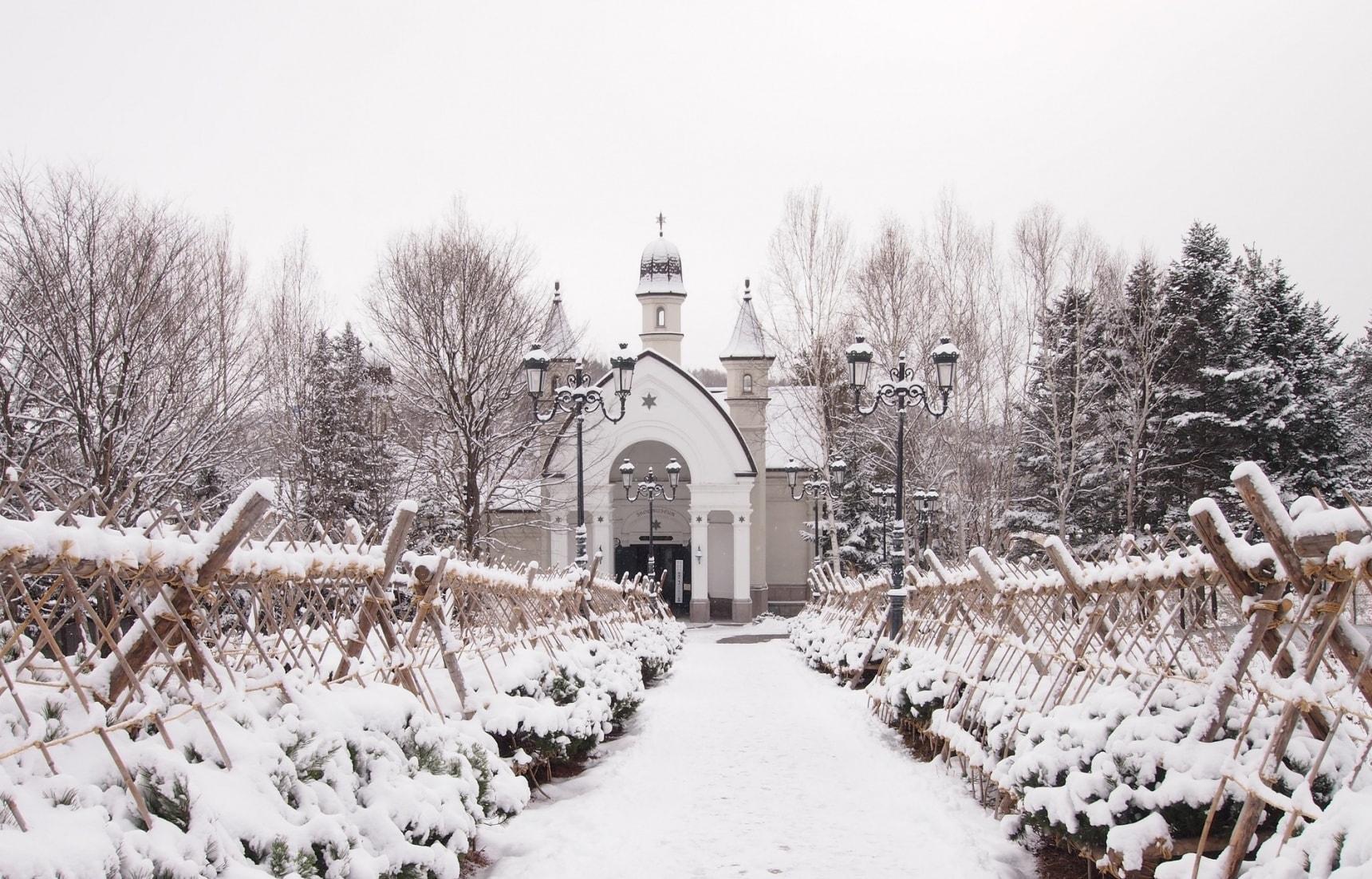 【北海道自由行】旭川・雪之美術館之冰雪奇緣之旅