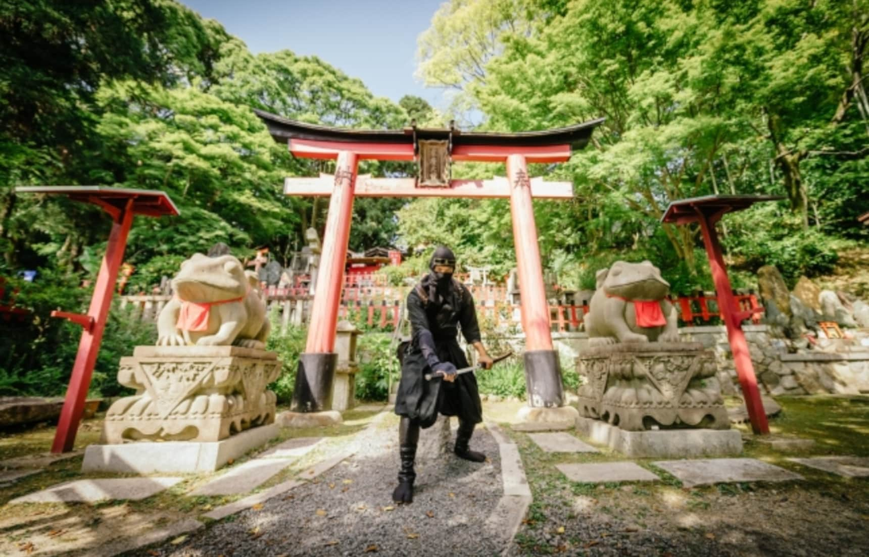 Tour Kyoto & Complete Ninja Missions