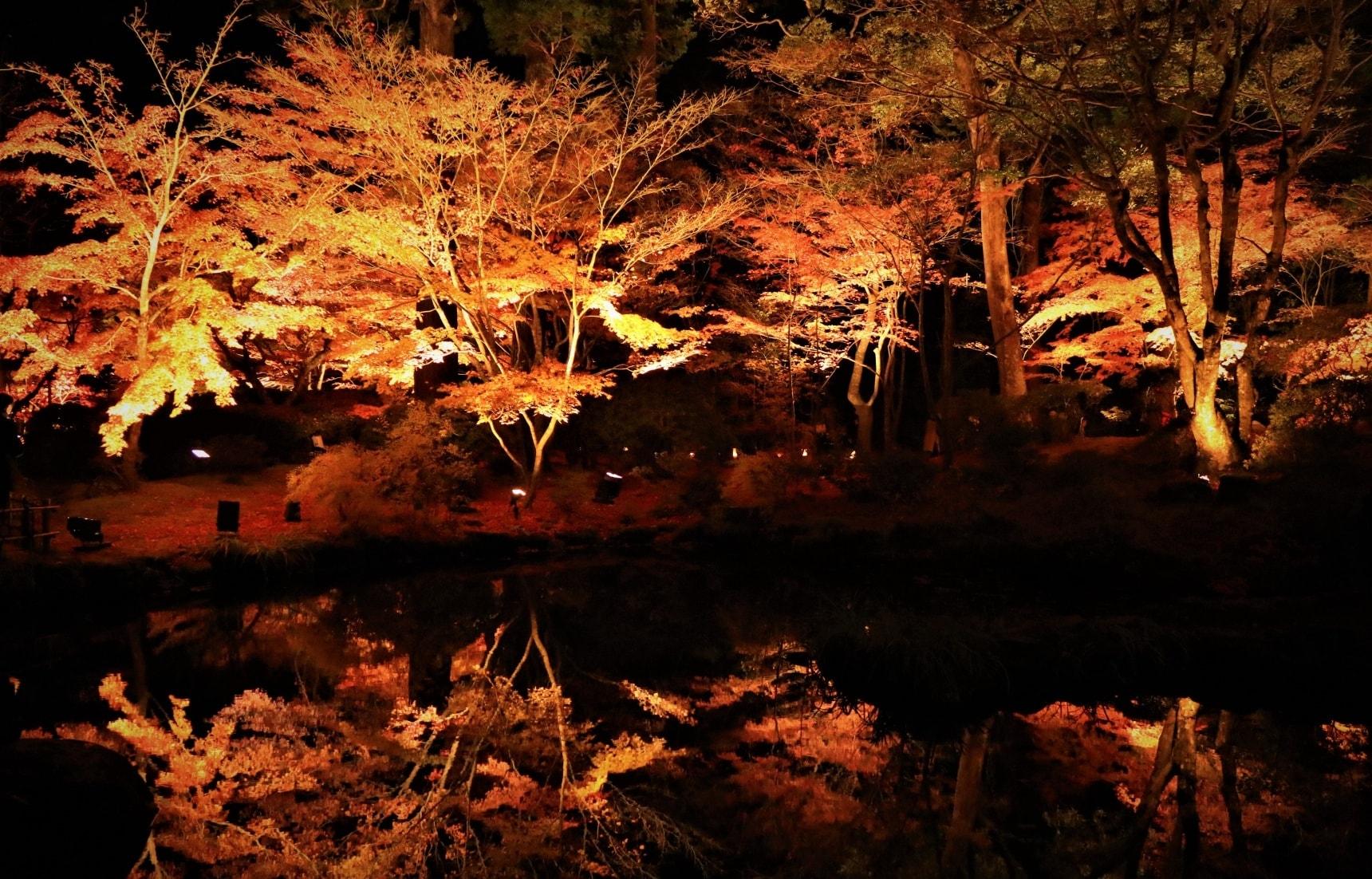 마츠시마의 아름다운 가을 밤