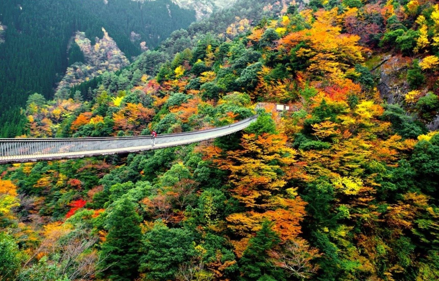 가을 여행지로 아름다운 큐슈