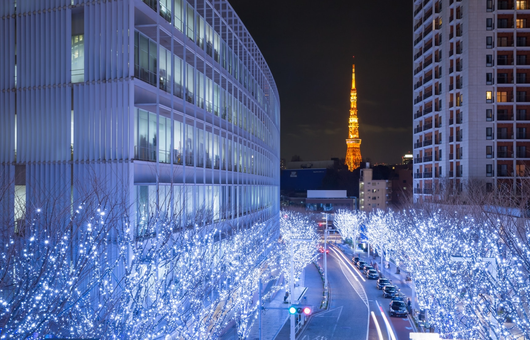 Tokyo's Top 5 Winter Illumination Events 2019!