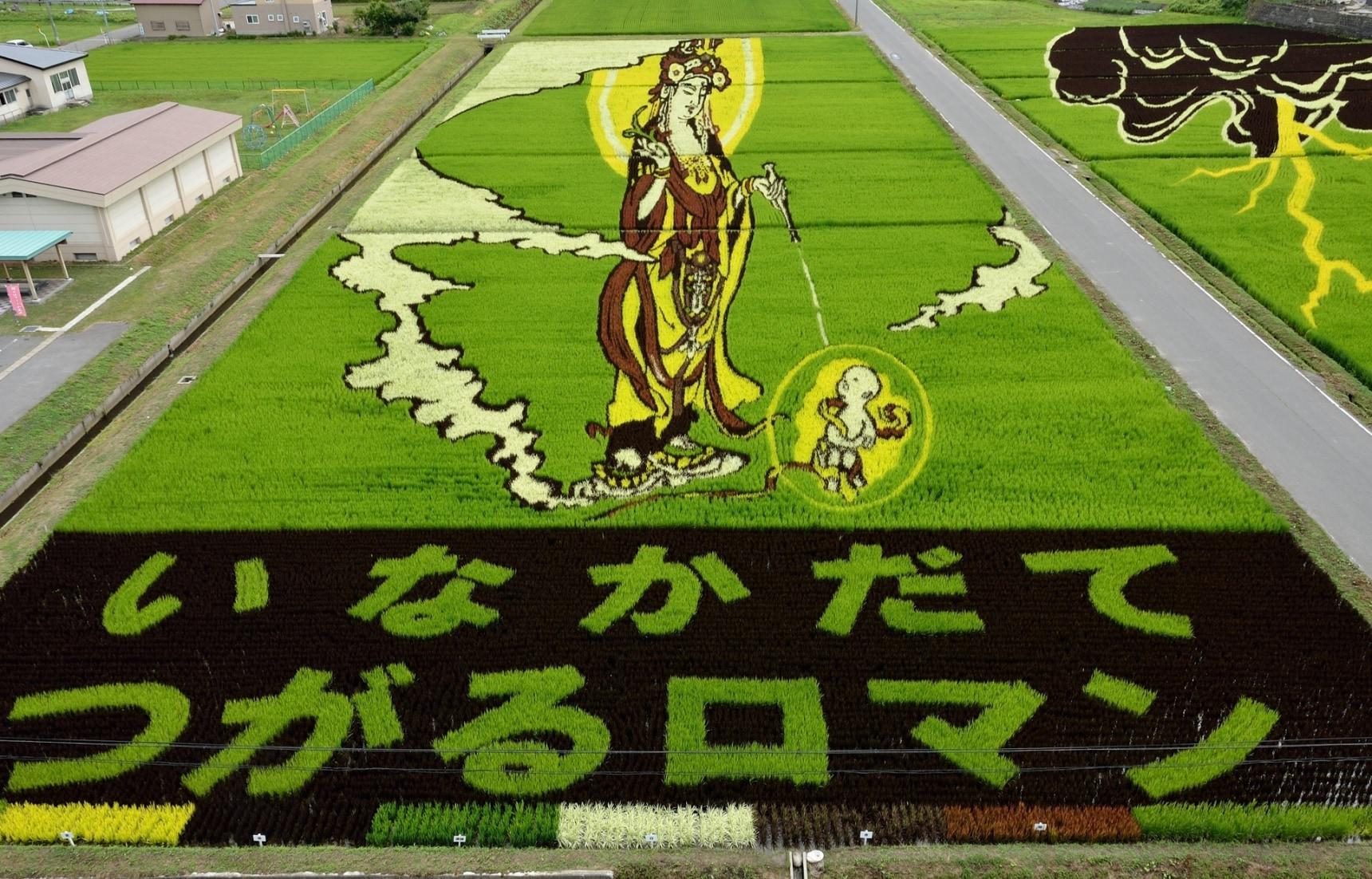 ชม 5 เทศกาล Tanbo Art ศิลปะบนท้องนาญี่ปุ่น