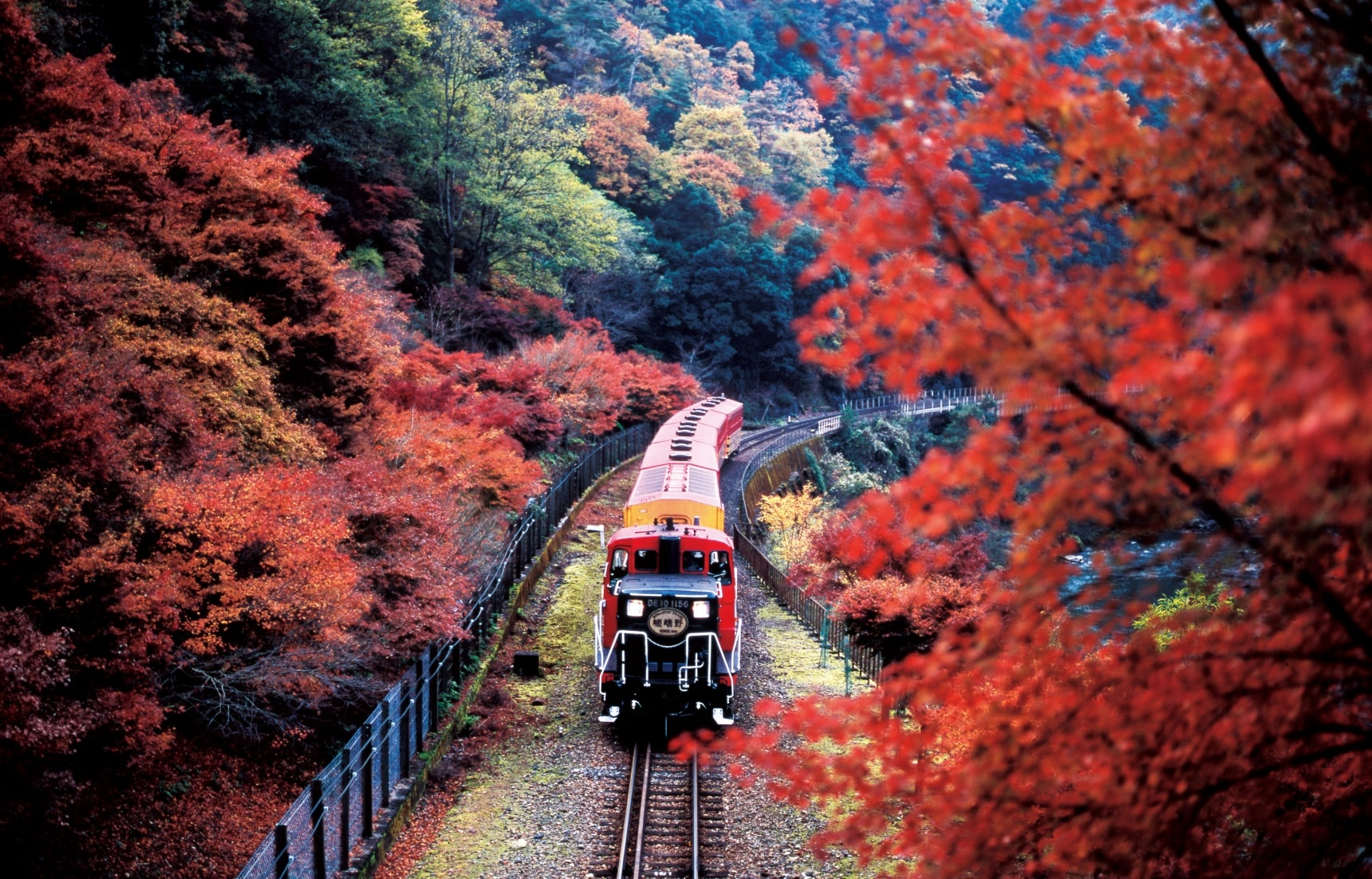Riding the Rails: The Sagano Scenic Railway