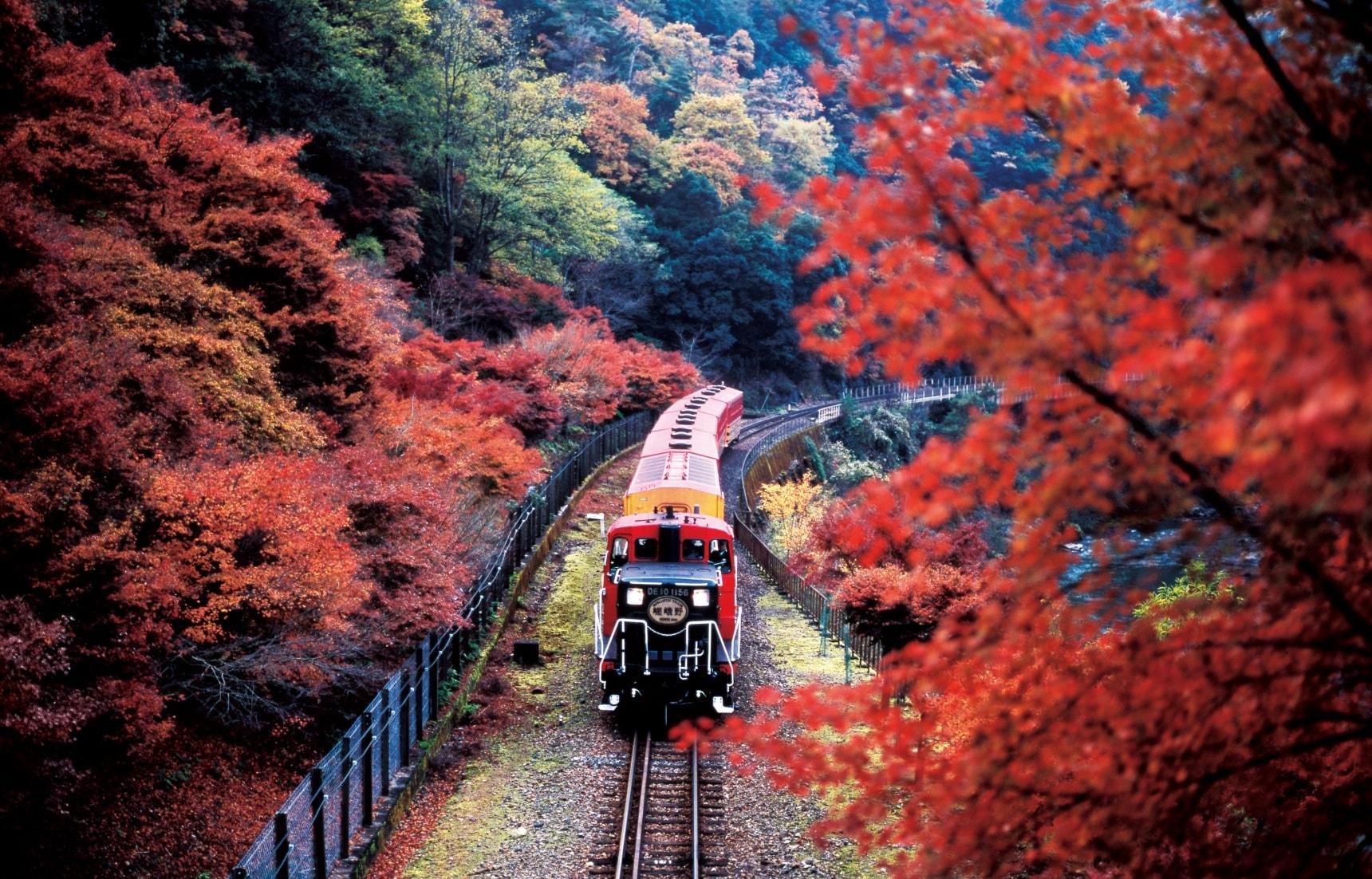 【京都自由行】沿著風景優美的保津川溪谷緩緩行駛的嵯峨野遊覽小火車