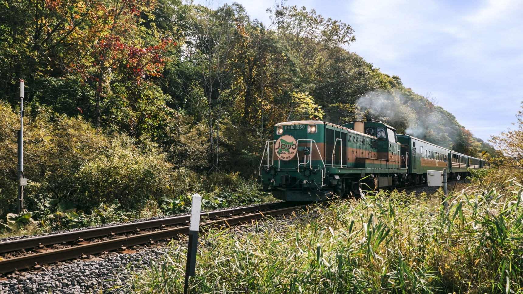 Traverse the Natural Wonders of Kushiro Marsh