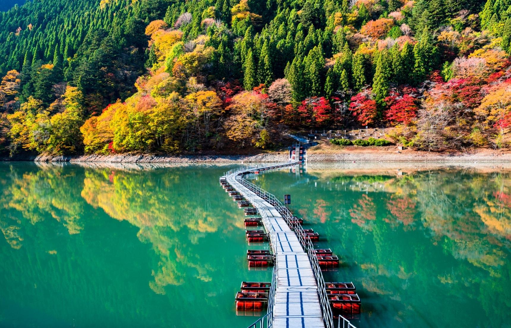 5 ที่เที่ยวลับๆ ในโตเกียวที่อยากให้คุณรู้จัก