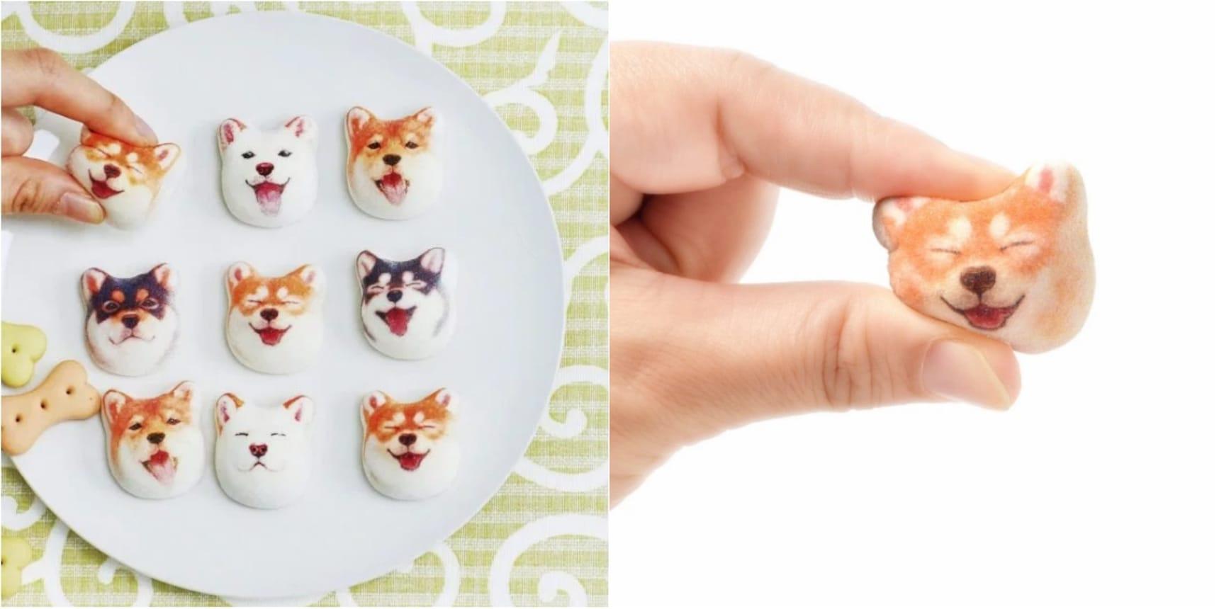 Kawaii Shiba Inu Marshmallows Too Sweet to Eat