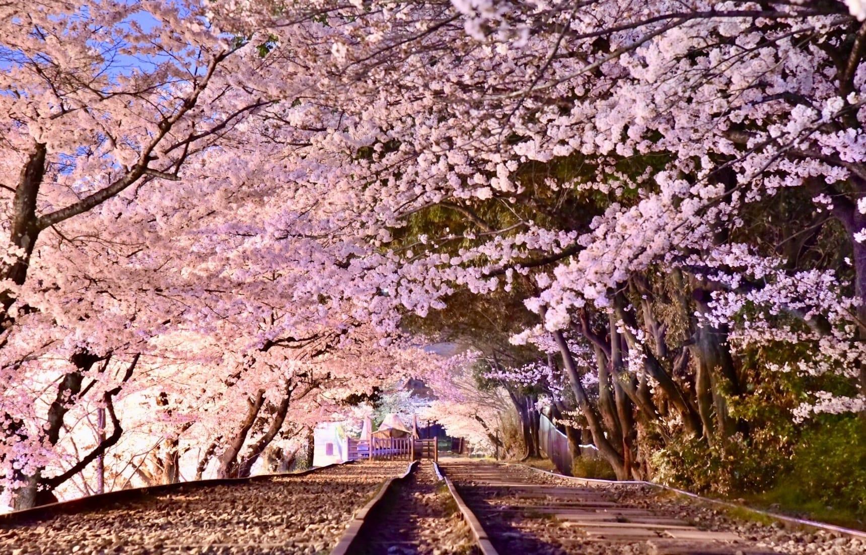 รวมสถานีน่าเที่ยวของ Kyoto Tozai Line
