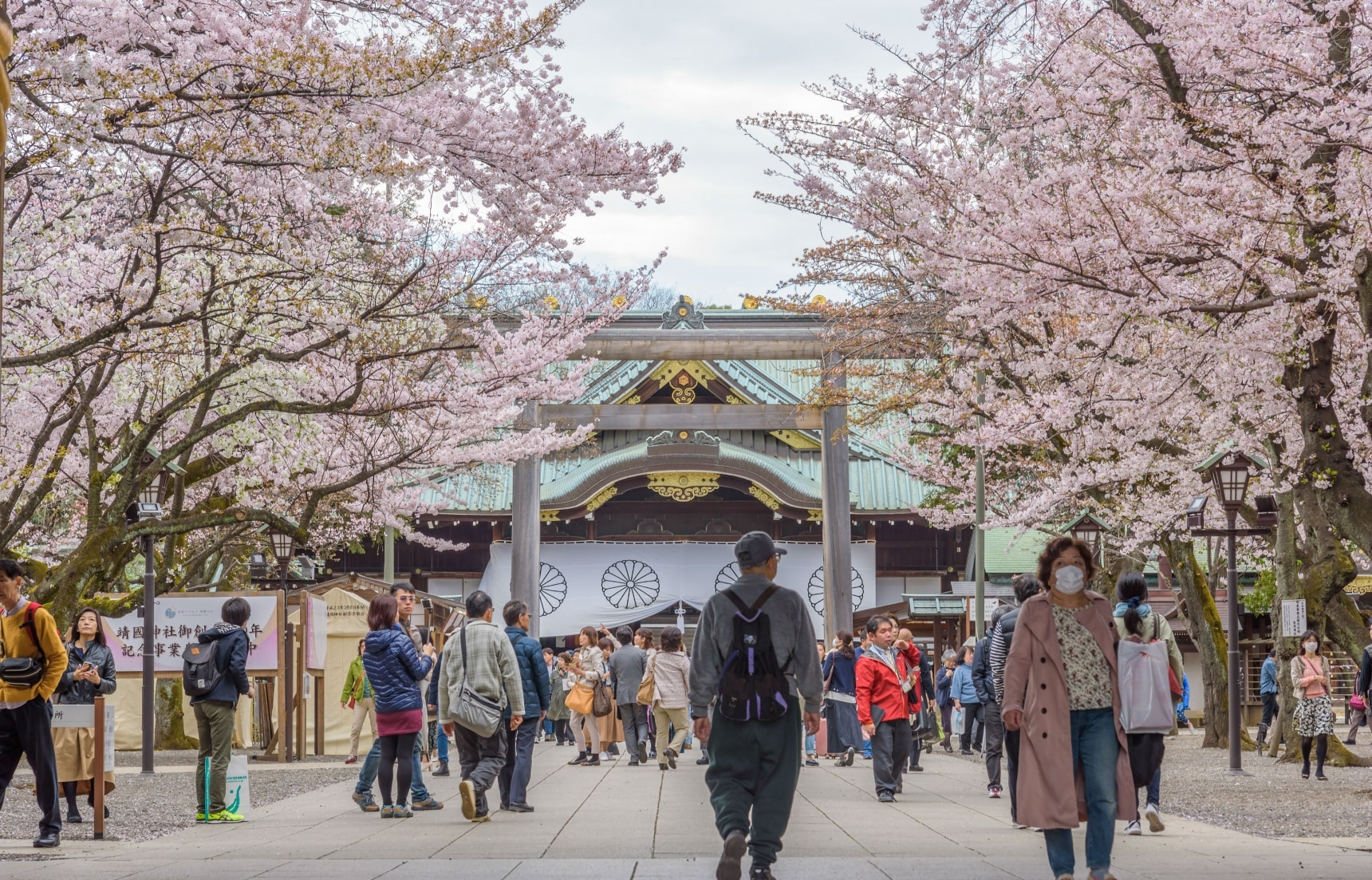 Hanami Starts in Tokyo with Index Tree