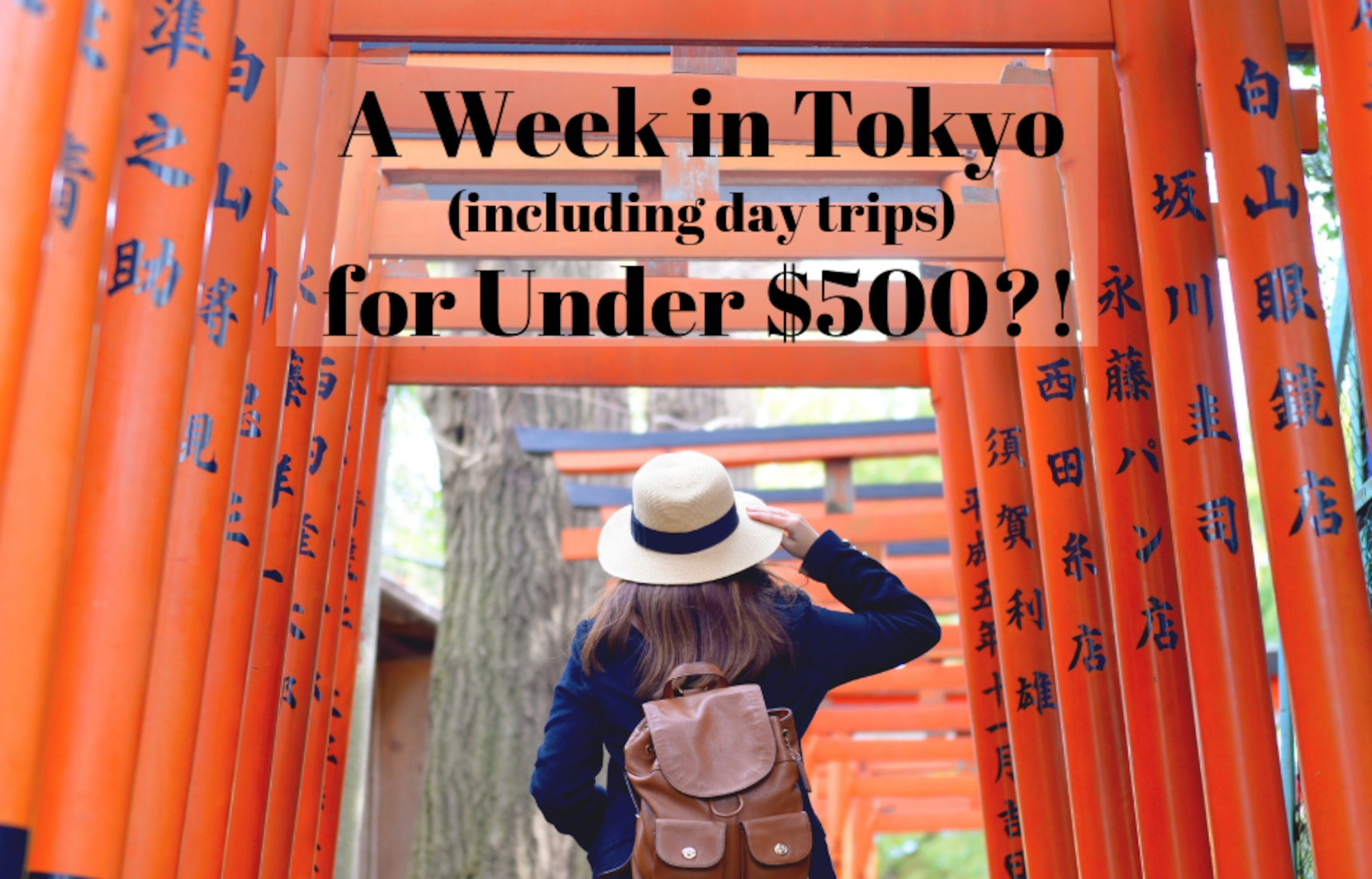 A Week in Tokyo (+ Day Trips) for Under $500?!