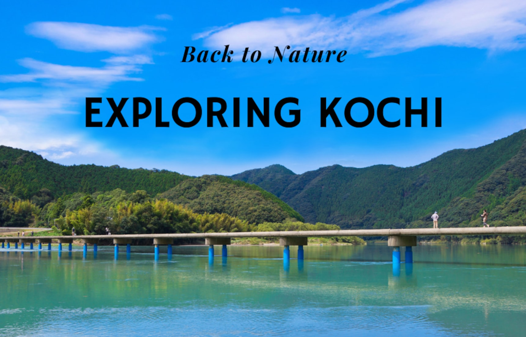 Getting Back to Nature in Kochi