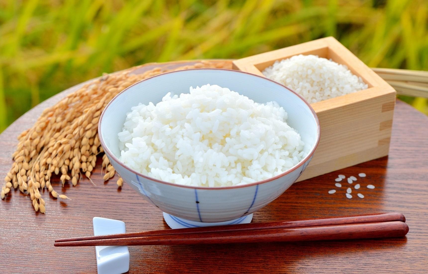 【日本自由行】美味到想帶回家的東北品牌米與帶米回台的注意事項
