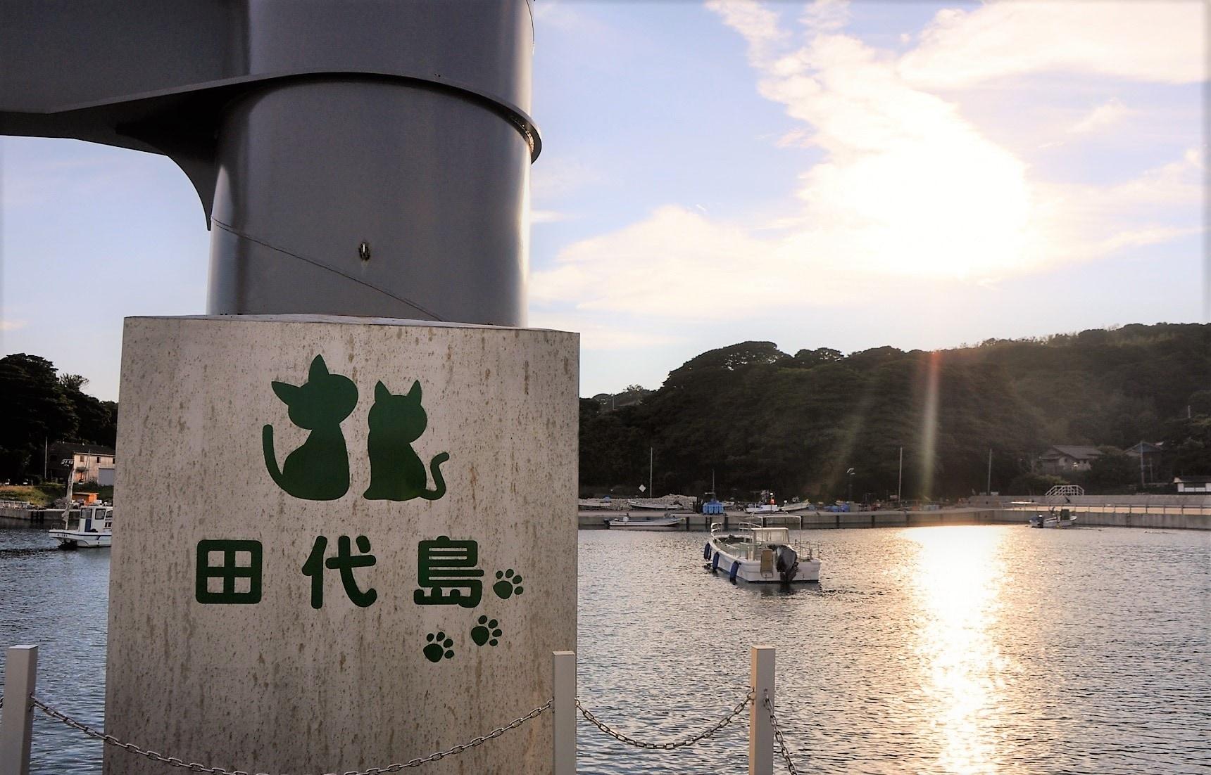 【日本宮城】或許小城市才是你的港灣!日本東北石卷市遊記