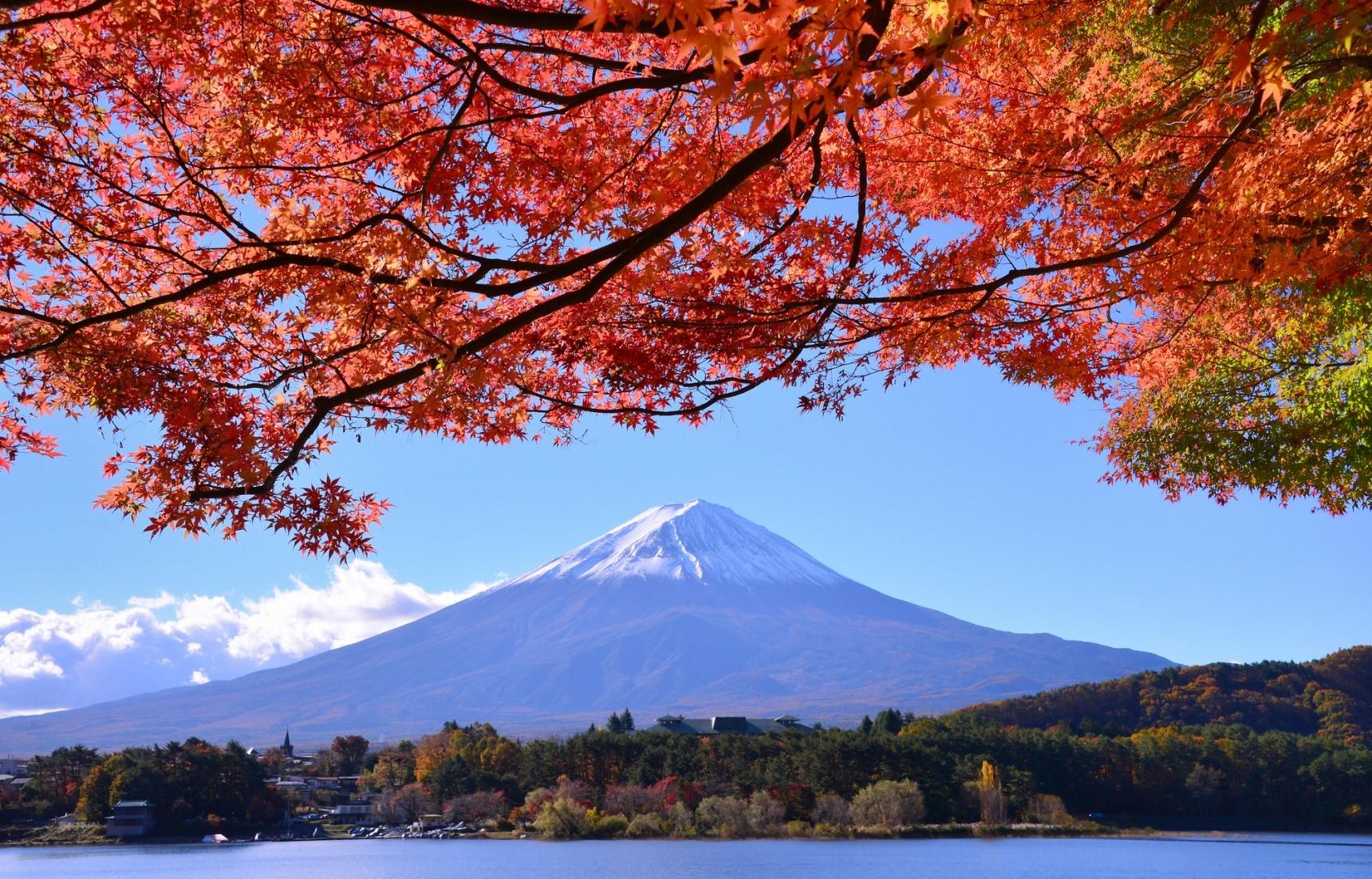 20 จุดชมใบไม้แดงสำหรับคนไปญี่ปุ่นเดือน 11