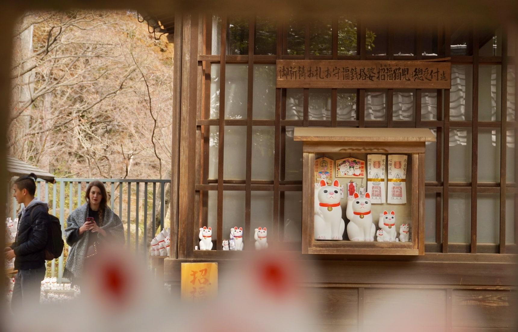 【東京自由行】搭上可愛貓咪列車,東急世田谷線一日文青散策