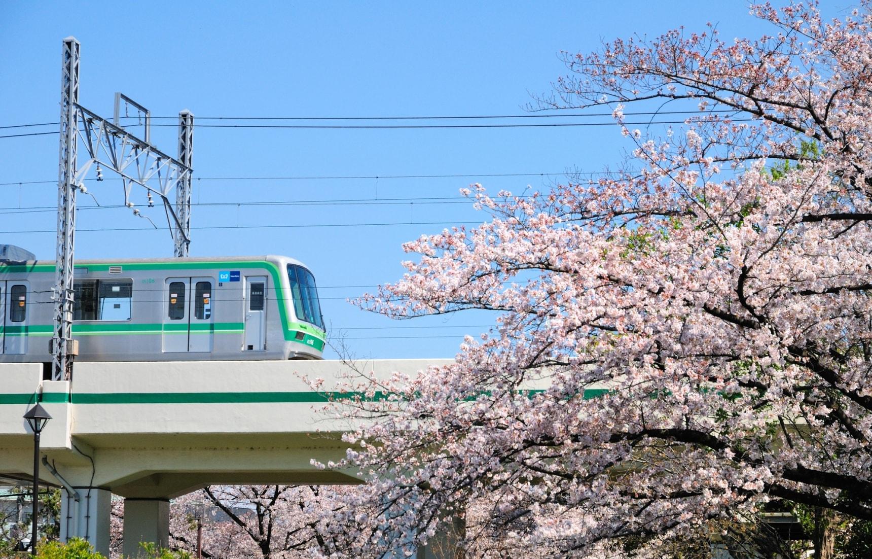 ลุยที่เที่ยวติดรถไฟ Tokyo Metro Chiyoda Line