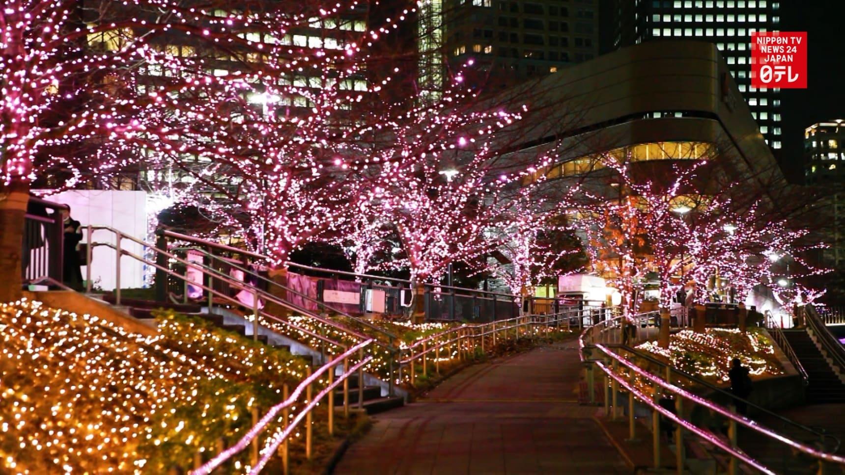 Waste Oil Helps Illuminate Tokyo in Winter