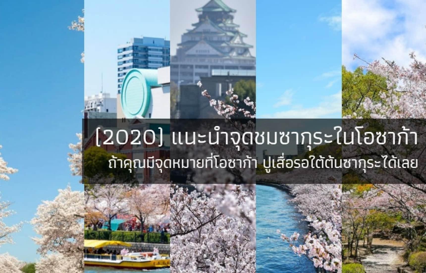 (2020) แนะนำจุดชมซากุระในโอซาก้า