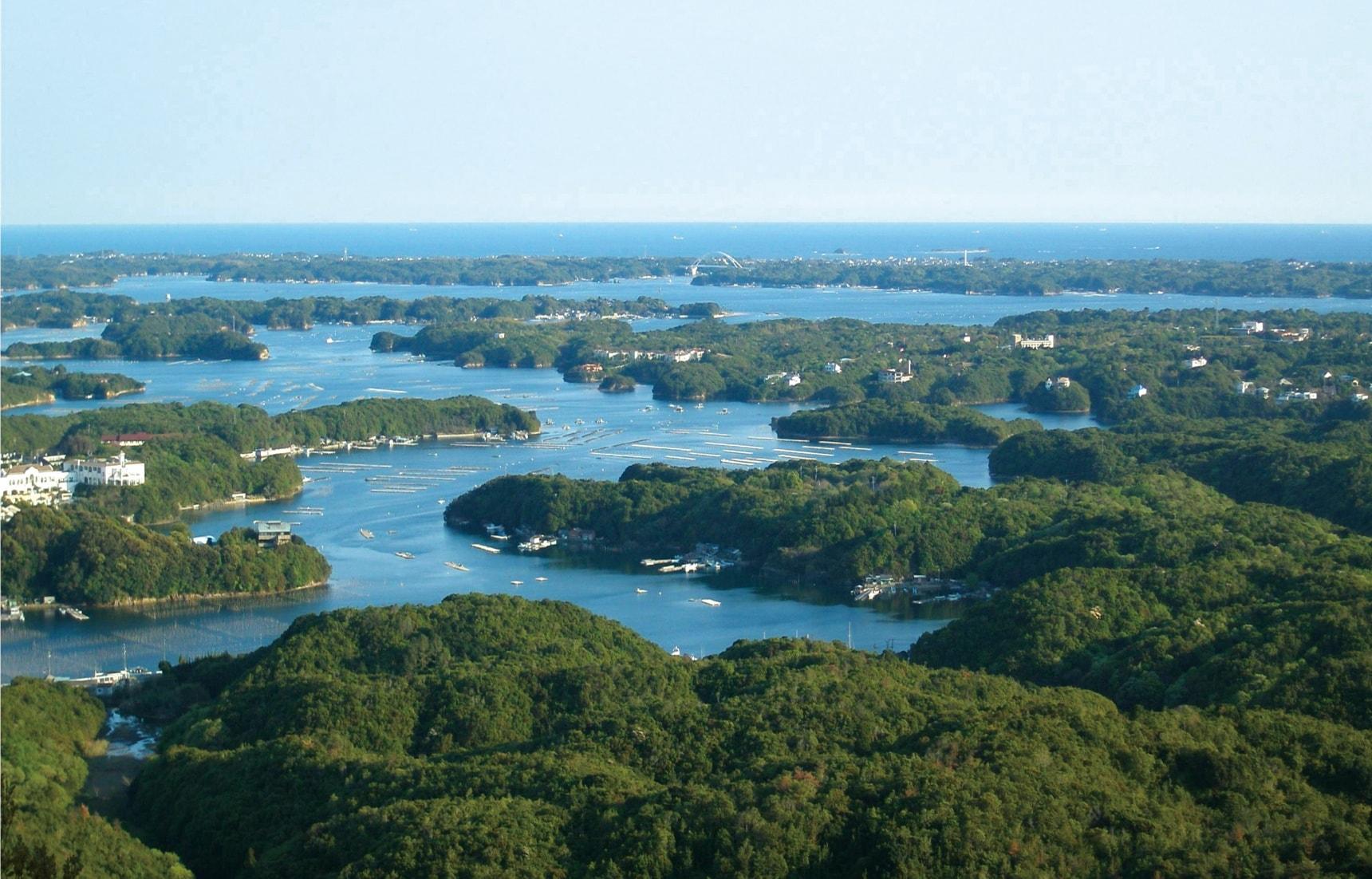 Coastal Culture & Living History