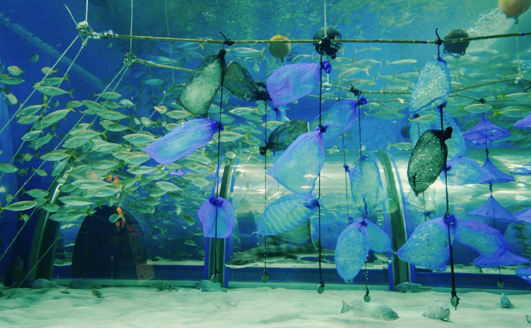 【日本青森】大手牽小手旅遊趣!窺探陸奧灣海洋文化孕育的「淺蟲溫泉鄉」