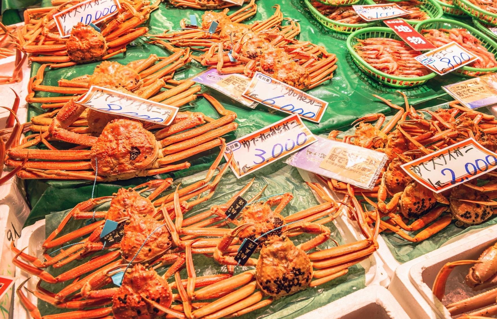 冬季限定的日本海螃蟹&隱身在紅磚倉庫的米其林推薦餐廳!福井兩天一夜不自駕行程推薦