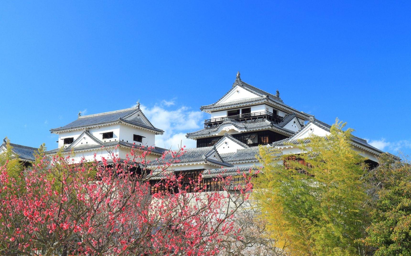 """【爱媛】日本百选名城""""松山城""""美景!还有柑橘王国的人气必尝甜点推荐!"""