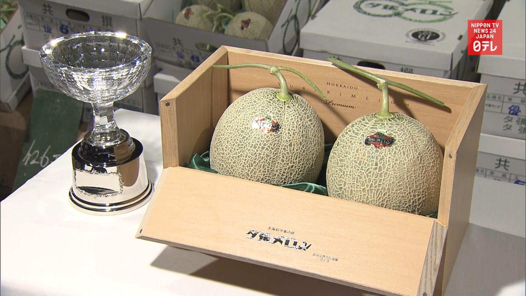 Yubari Melon Gets Fraction of Last Year Price