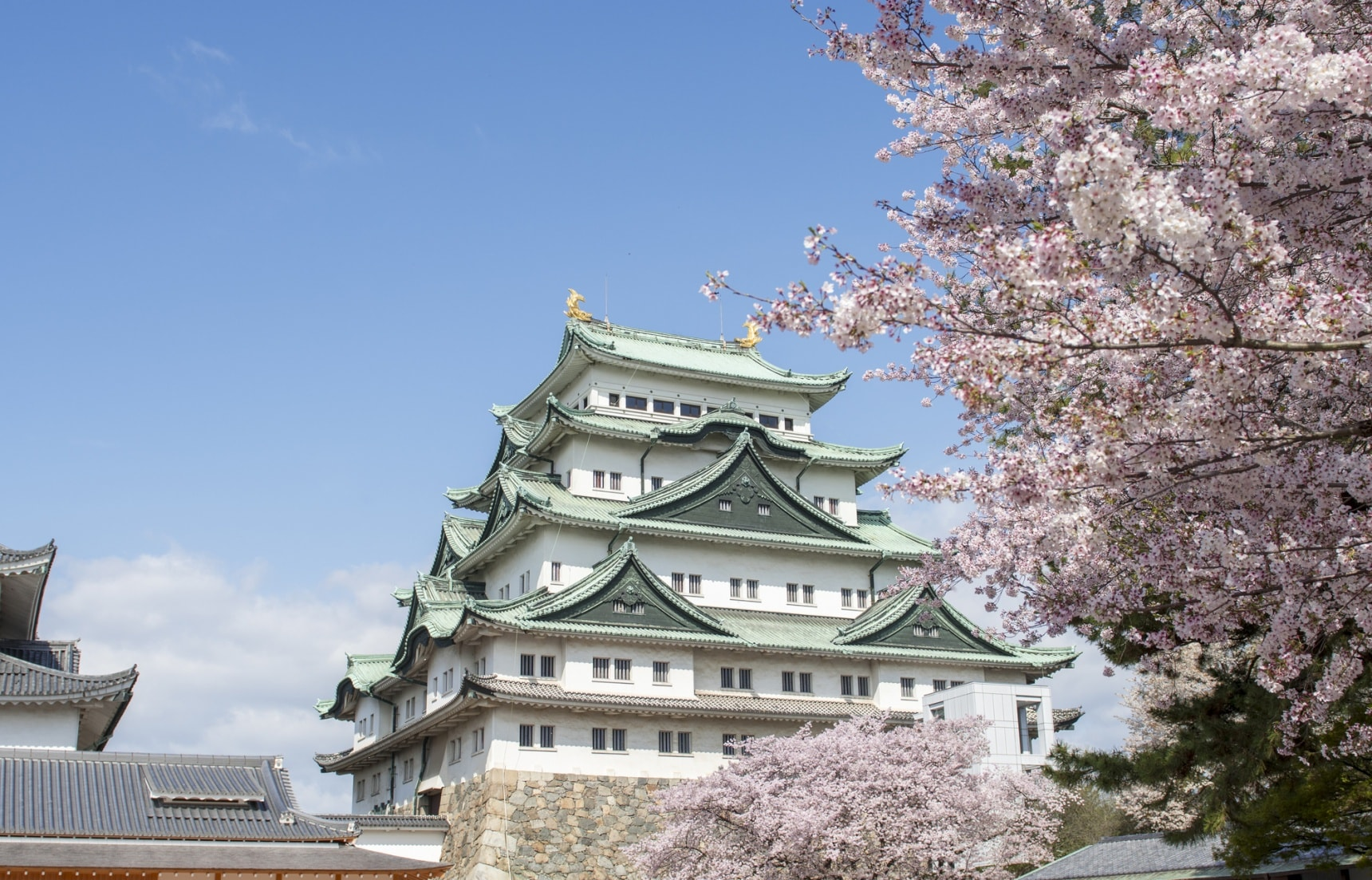 11 Photogenic Places in Nagoya