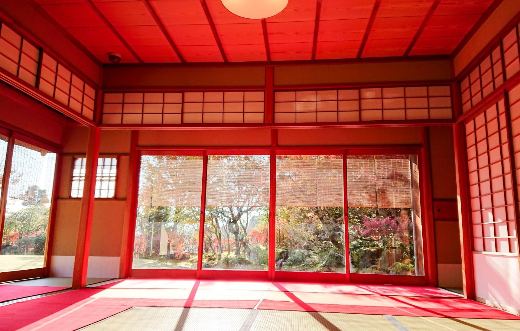 喝掛川茶品嘗烤鰻魚,眺望富士山漫步竹林小徑,初訪靜岡的推薦行程