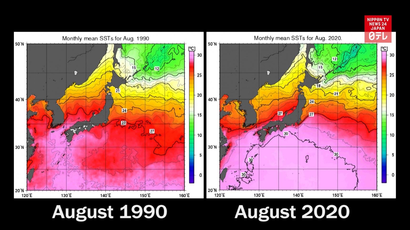 Sea Surface Temperatures in Japan Soar