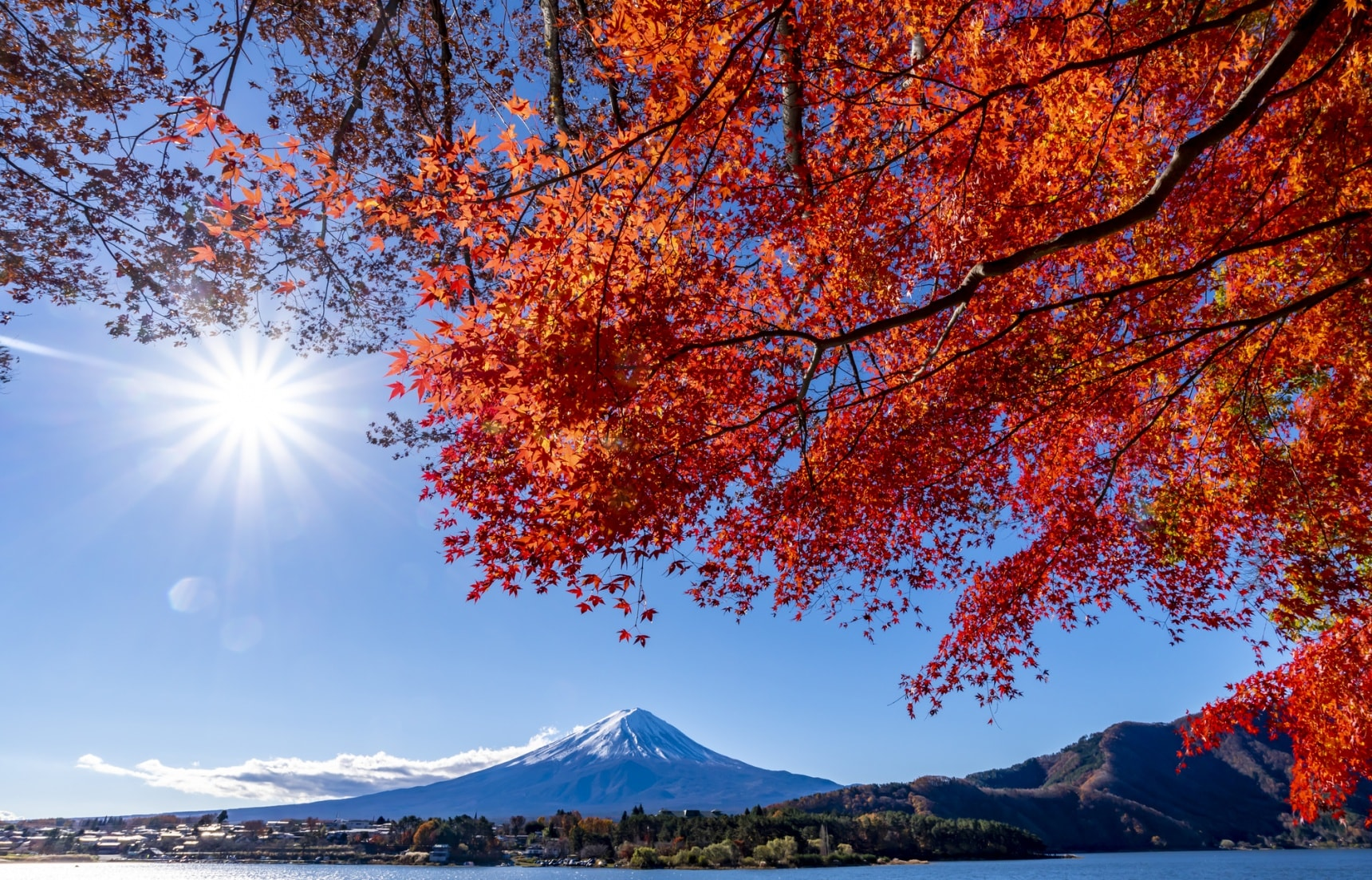 2020 Fall Foliage Forecast